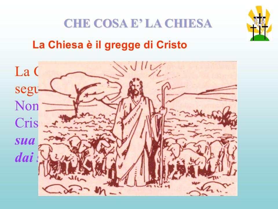 La Chiesa è la comunità di coloro che seguono Cristo.