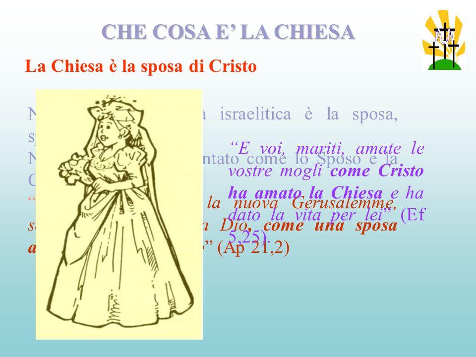 CHE COSA E' LA CHIESA La Chiesa è la sposa di Cristo