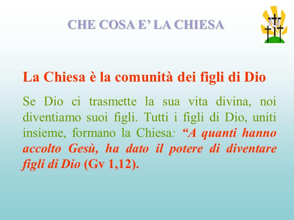 La Chiesa è la comunità dei figli di Dio