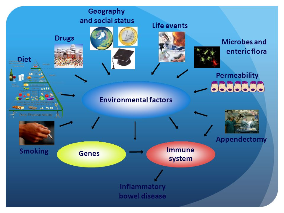 Geography and social status. Life events. Drugs. Microbes and. enteric flora. Diet. Permeability.