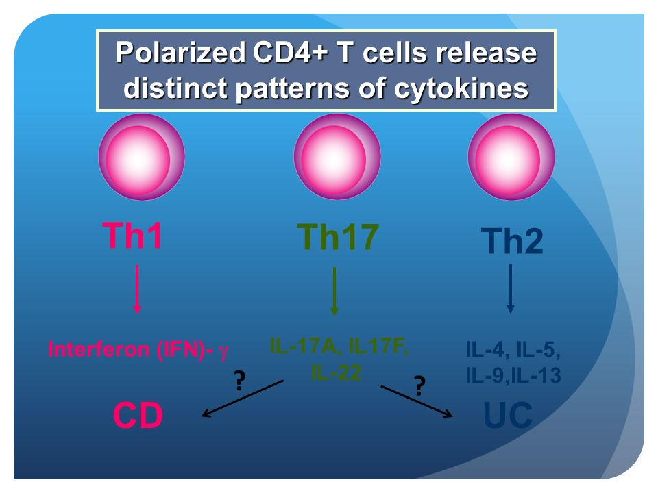 Polarized CD4+ T cells release distinct patterns of cytokines