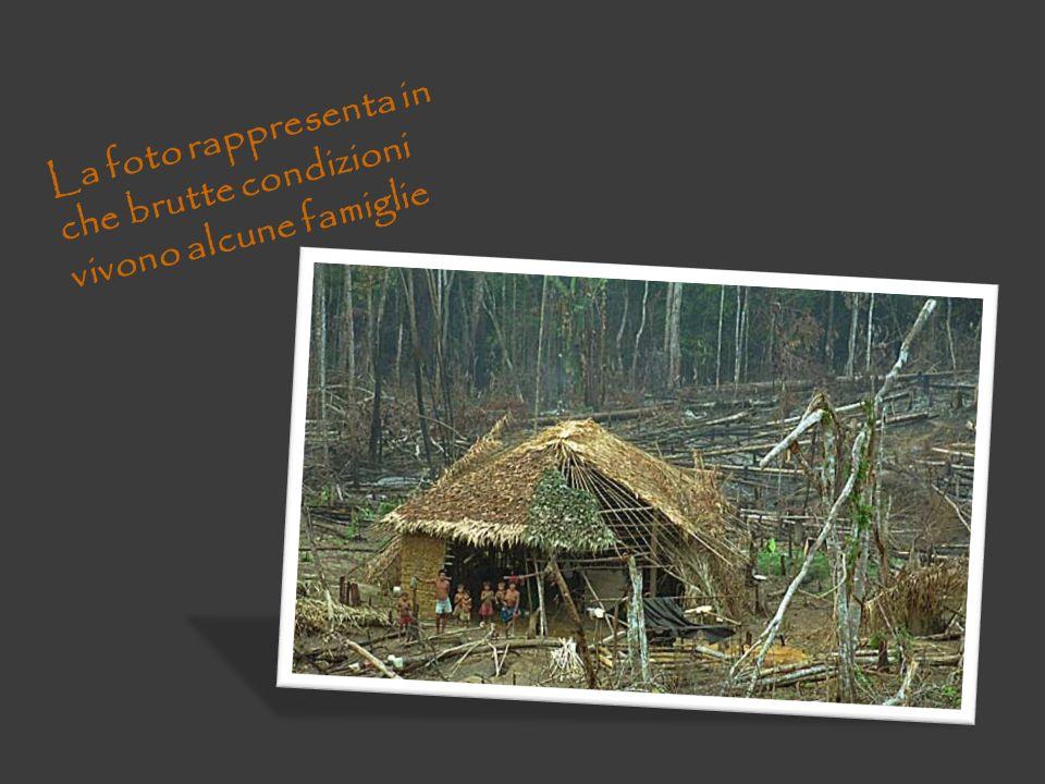 La foto rappresenta in che brutte condizioni vivono alcune famiglie