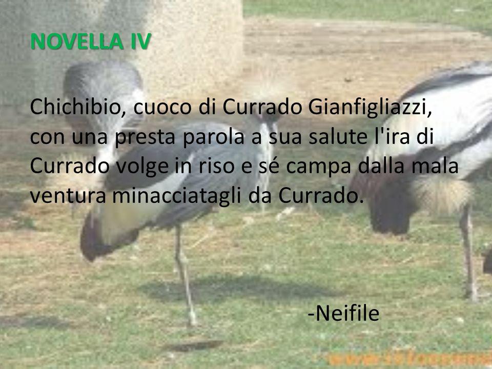 NOVELLA IV
