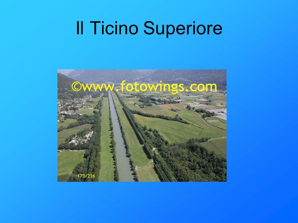 Il Ticino Superiore