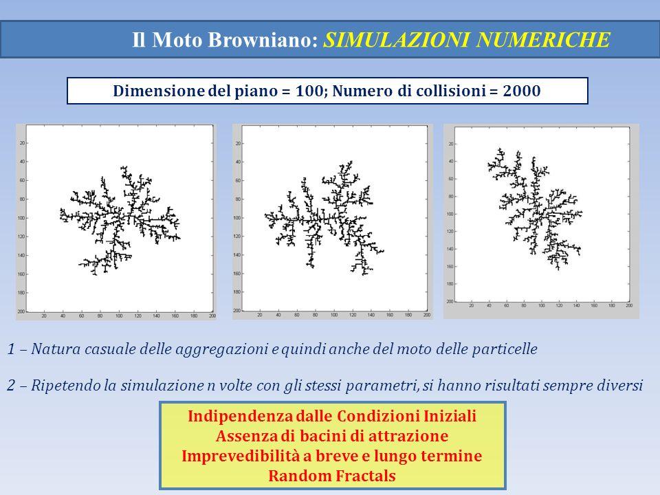 Il Moto Browniano: SIMULAZIONI NUMERICHE