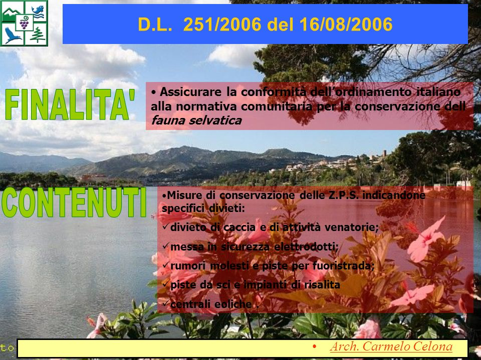 FINALITA CONTENUTI D.L. 251/2006 del 16/08/2006 Arch. Carmelo Celona