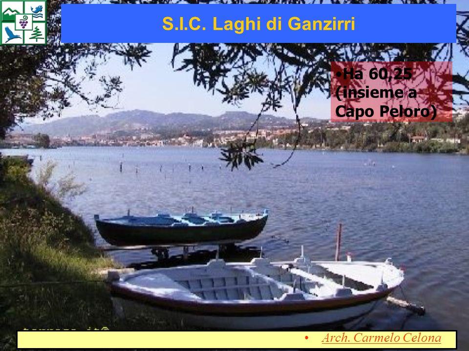 S.I.C. Laghi di Ganzirri Ha 60,25 (insieme a Capo Peloro)