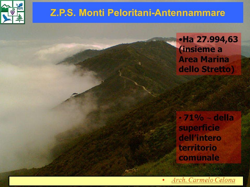 Z.P.S. Monti Peloritani-Antennammare