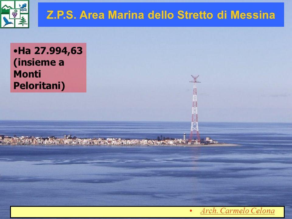 Z.P.S. Area Marina dello Stretto di Messina