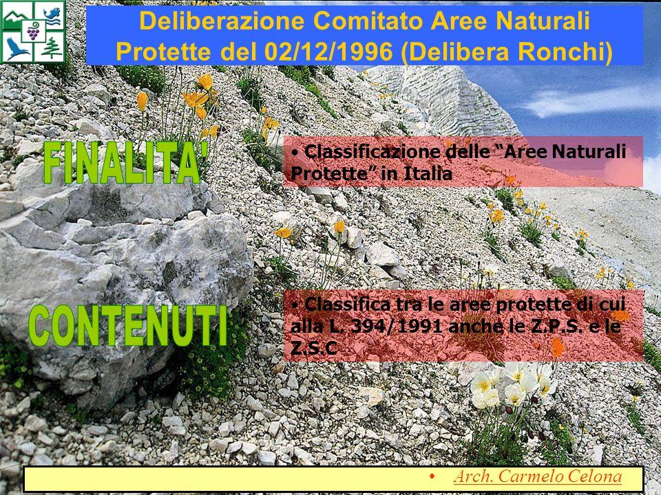 Deliberazione Comitato Aree Naturali Protette del 02/12/1996 (Delibera Ronchi)