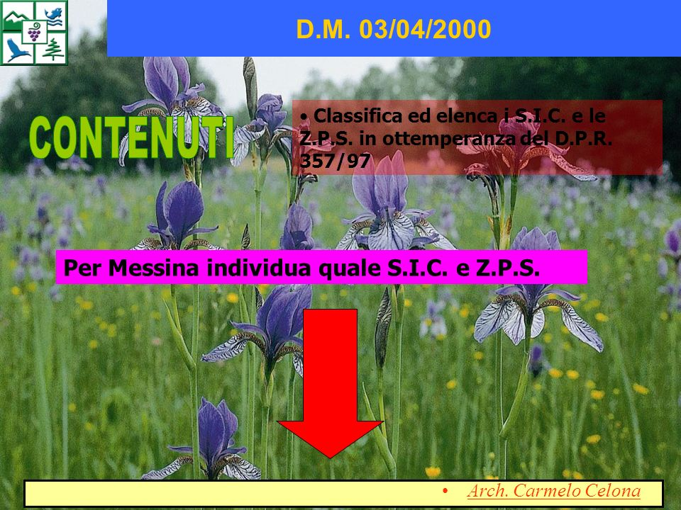 CONTENUTI D.M. 03/04/2000 Per Messina individua quale S.I.C. e Z.P.S.