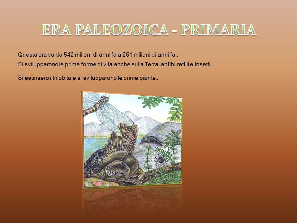 ERA PALEOZOICA - PRIMARIA