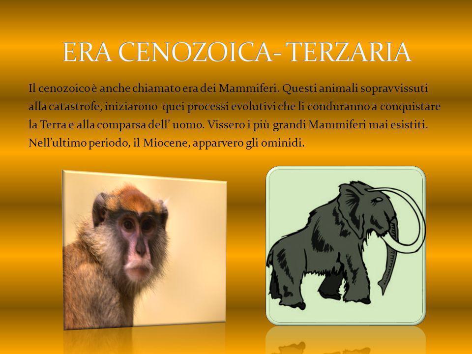 ERA CENOZOICA- TERZARIA