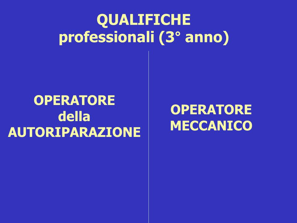 QUALIFICHE professionali (3° anno)