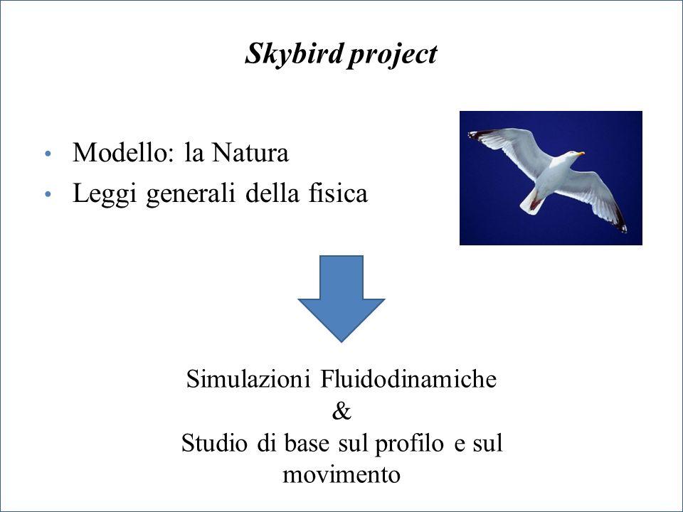 Skybird project Modello: la Natura Leggi generali della fisica