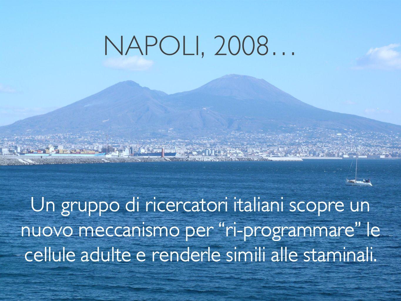 NAPOLI, 2008…