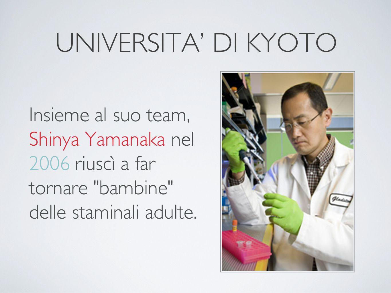 UNIVERSITA' DI KYOTO Insieme al suo team, Shinya Yamanaka nel 2006 riuscì a far tornare bambine delle staminali adulte.
