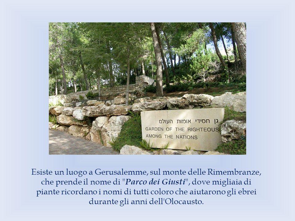 Esiste un luogo a Gerusalemme, sul monte delle Rimembranze, che prende il nome di Parco dei Giusti , dove migliaia di piante ricordano i nomi di tutti coloro che aiutarono gli ebrei durante gli anni dell Olocausto.