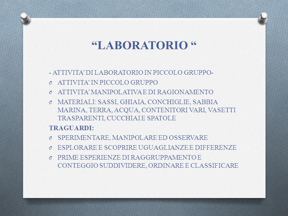 LABORATORIO - ATTIVITA' DI LABORATORIO IN PICCOLO GRUPPO-