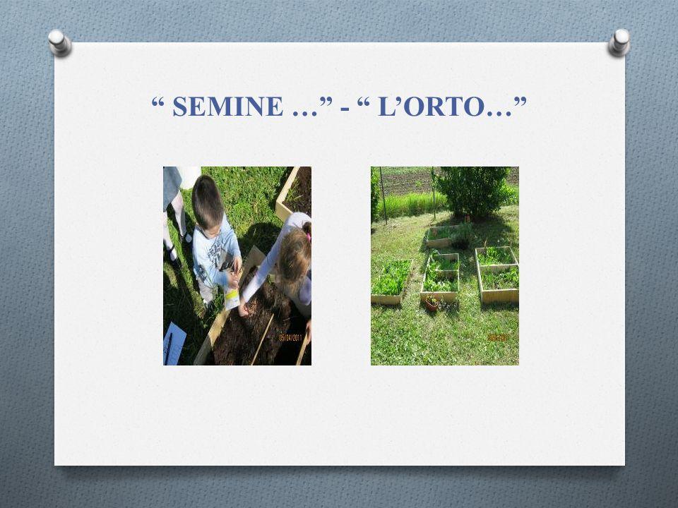 SEMINE … - L'ORTO…