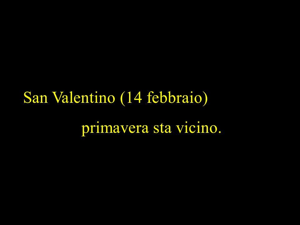San Valentino (14 febbraio)