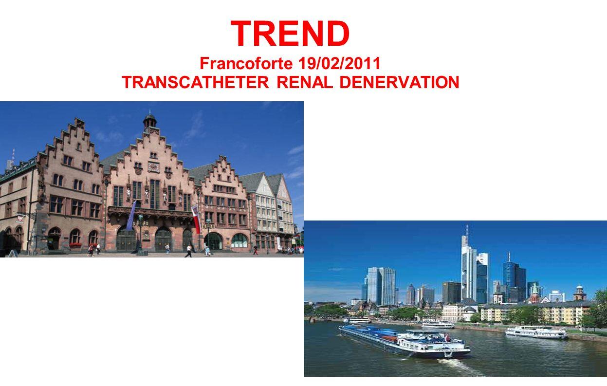 TREND Francoforte 19/02/2011 TRANSCATHETER RENAL DENERVATION