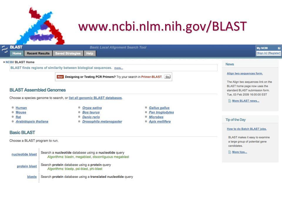 www.ncbi.nlm.nih.gov/BLAST