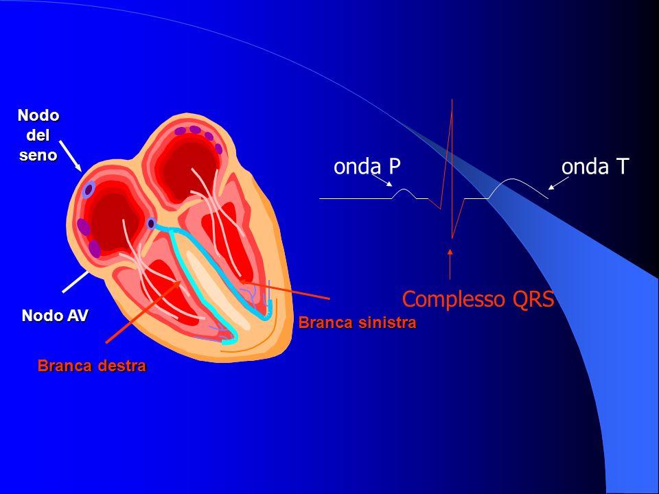 onda P onda T Complesso QRS Nodo del seno Atrio sin Atrio dx Ventr.
