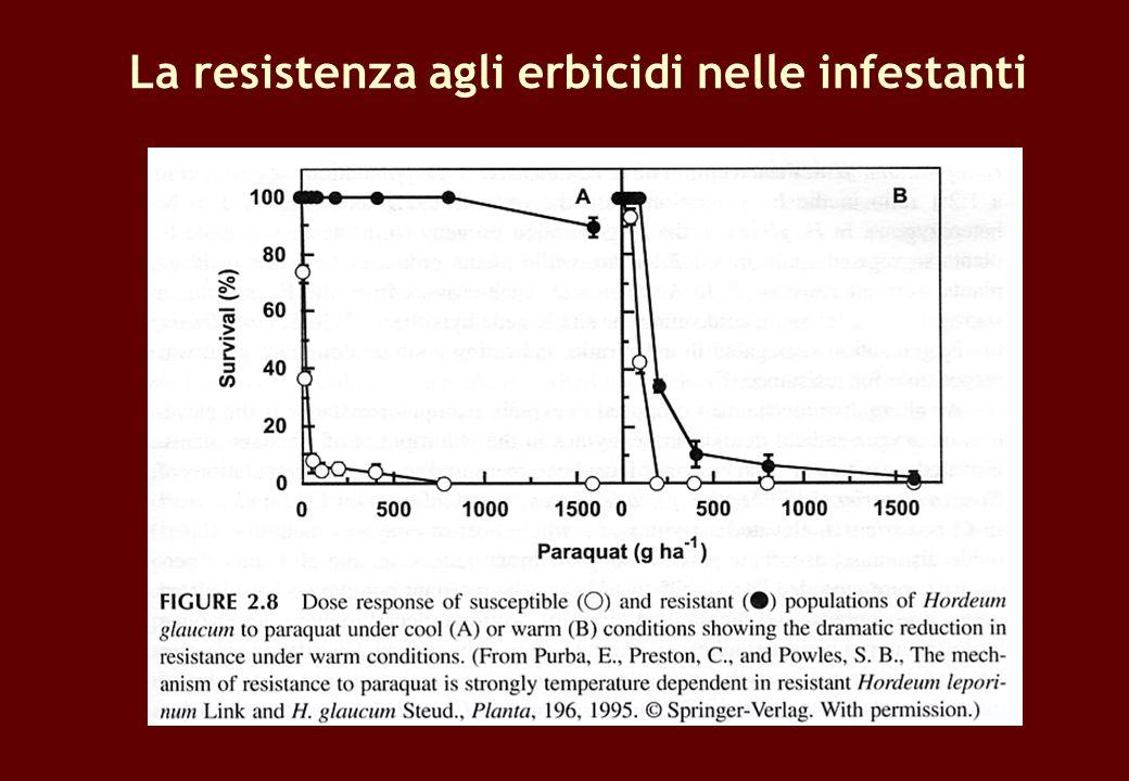 La resistenza agli erbicidi nelle infestanti