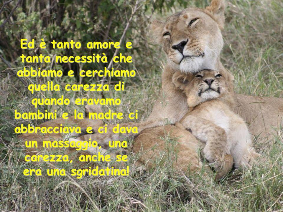 Ed è tanto amore e tanta necessità che abbiamo e cerchiamo quella carezza di quando eravamo bambini e la madre ci abbracciava e ci dava un massaggio, una carezza, anche se era una sgridatina!