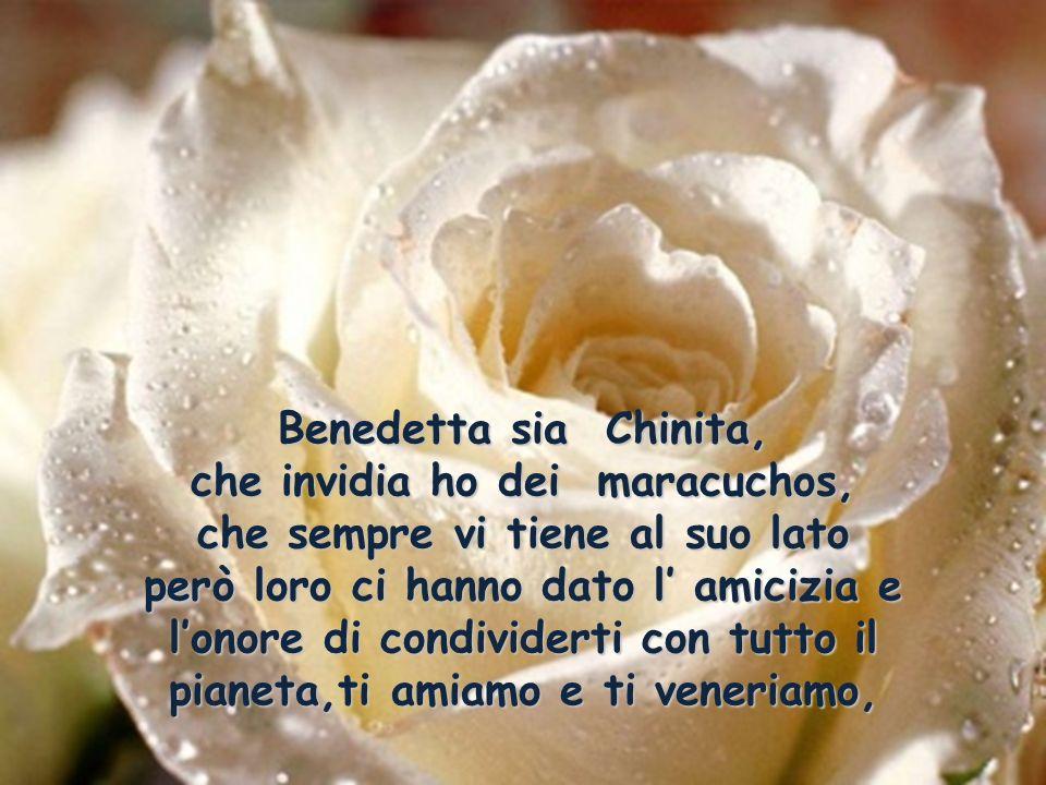 Benedetta sia Chinita, che invidia ho dei maracuchos, che sempre vi tiene al suo lato però loro ci hanno dato l' amicizia e l'onore di condividerti con tutto il pianeta,ti amiamo e ti veneriamo,
