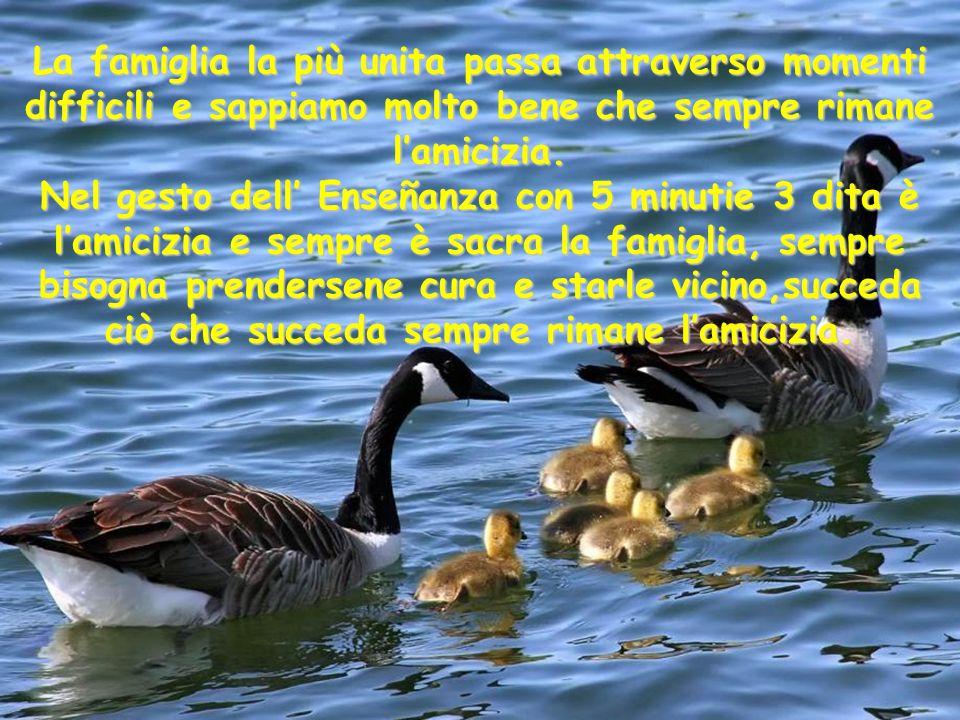 La famiglia la più unita passa attraverso momenti difficili e sappiamo molto bene che sempre rimane l'amicizia.