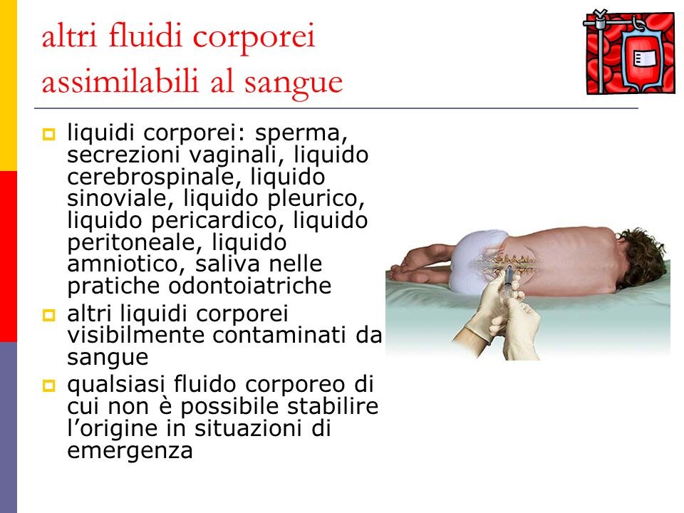 altri fluidi corporei assimilabili al sangue