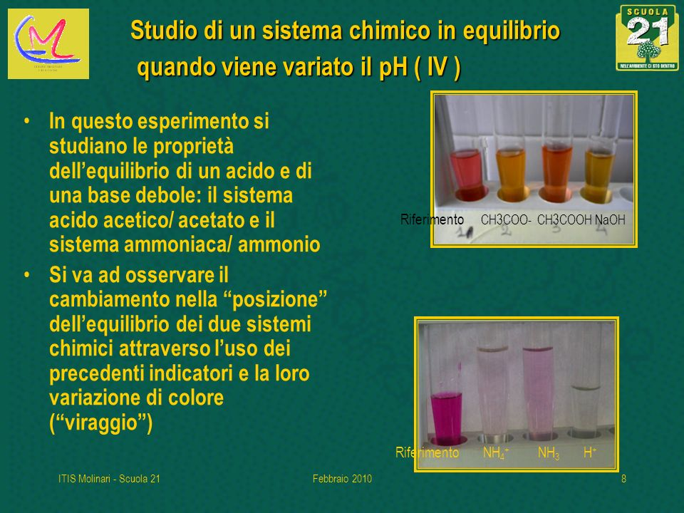 Studio di un sistema chimico in equilibrio quando viene variato il pH ( IV )