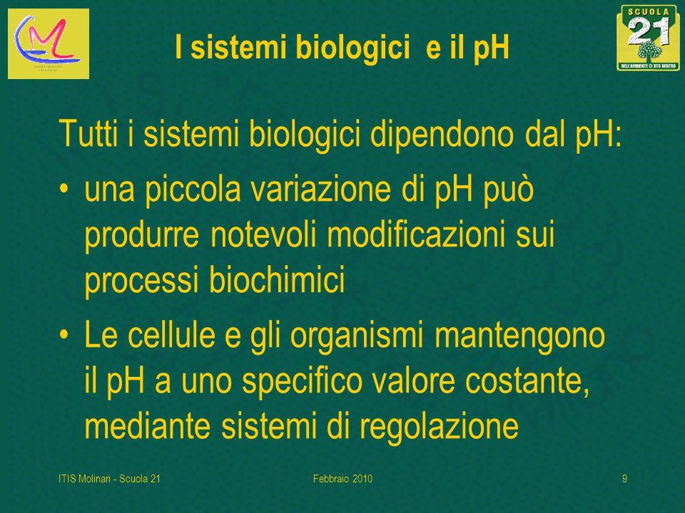 I sistemi biologici e il pH