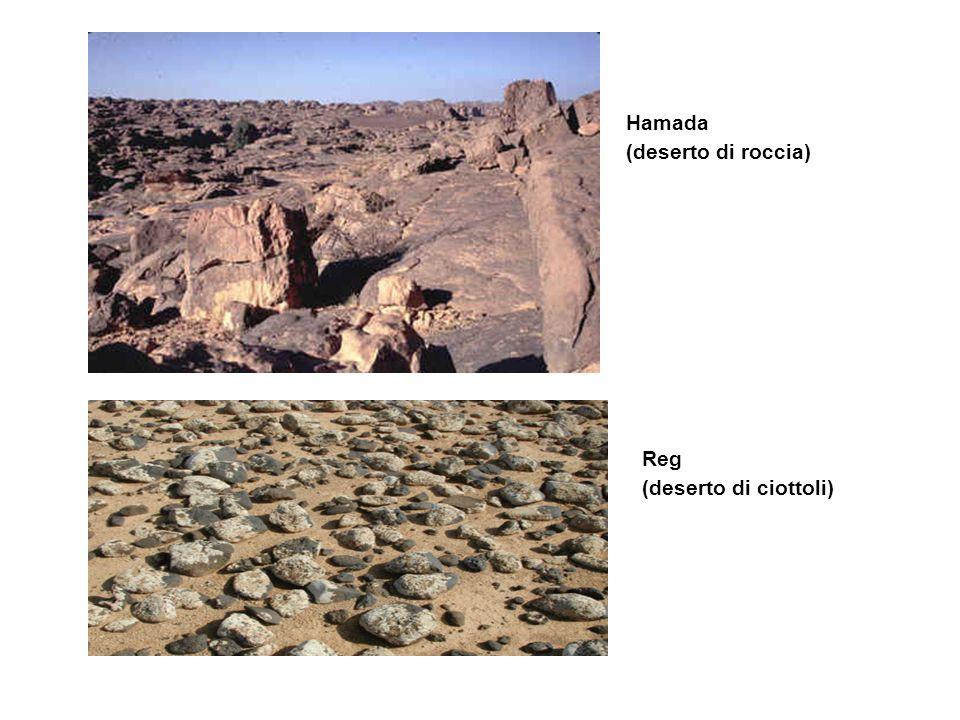 Hamada (deserto di roccia) Reg (deserto di ciottoli)