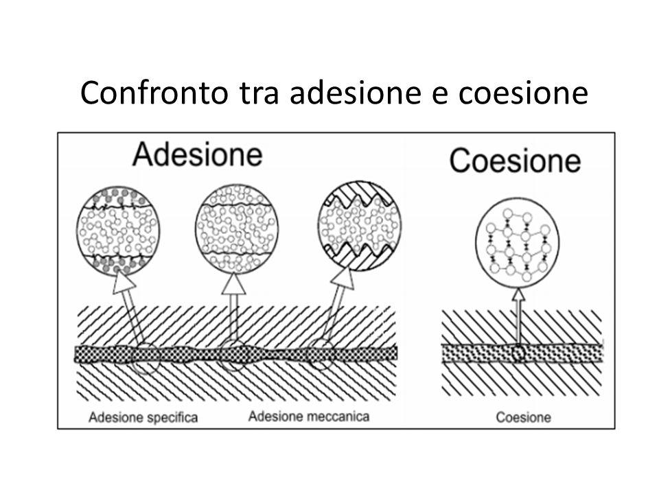 Confronto tra adesione e coesione