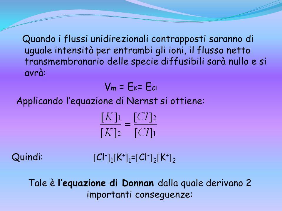 Quando i flussi unidirezionali contrapposti saranno di uguale intensità per entrambi gli ioni, il flusso netto transmembranario delle specie diffusibili sarà nullo e si avrà: