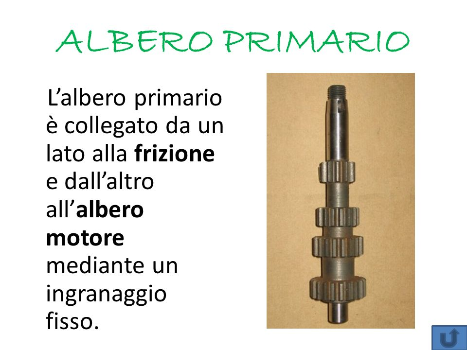 ALBERO PRIMARIO L'albero primario è collegato da un lato alla frizione e dall'altro all'albero motore mediante un ingranaggio fisso.