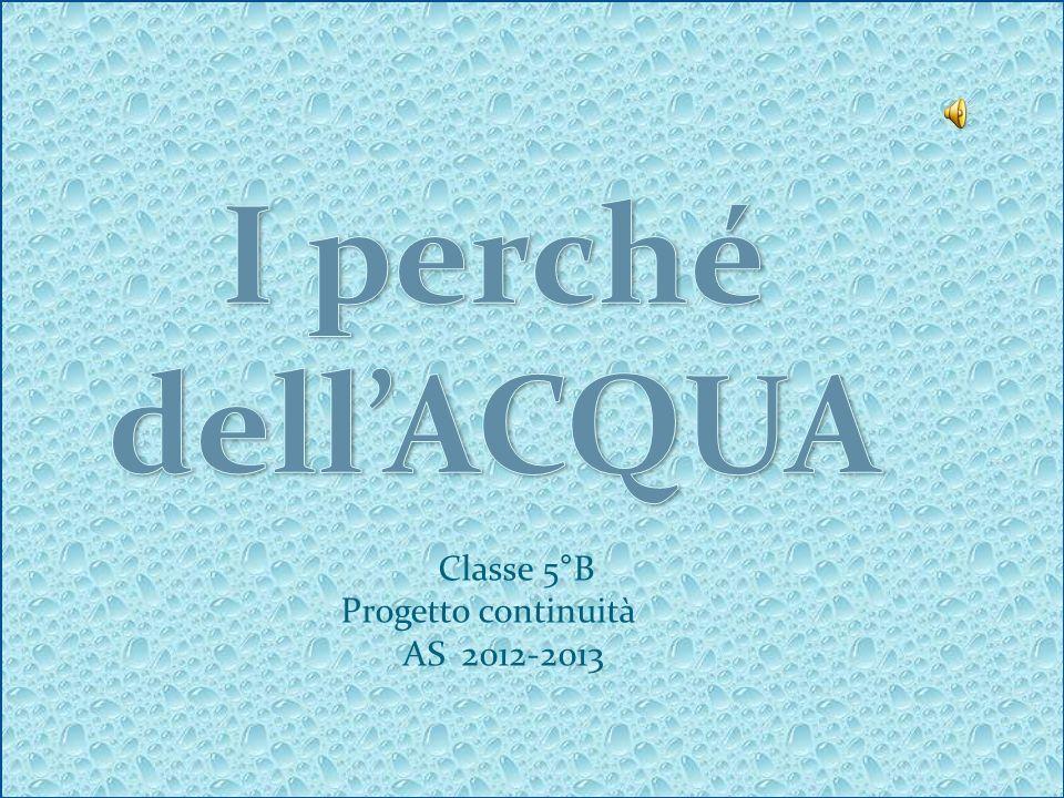 I perché dell'ACQUA Classe 5°B Progetto continuità AS 2012-2013