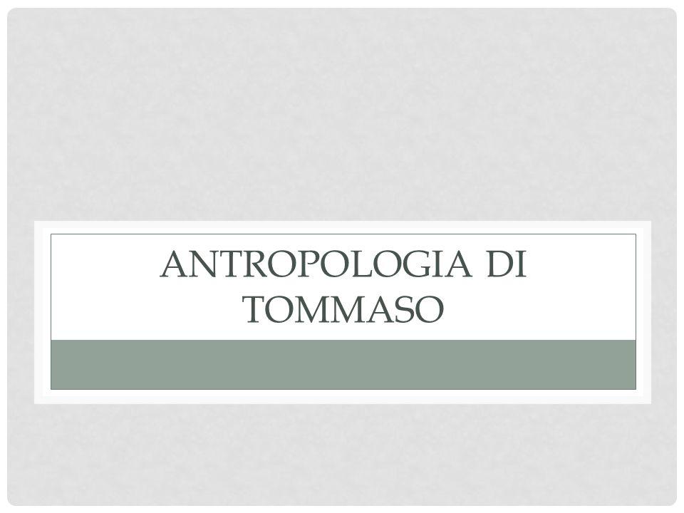 Antropologia di Tommaso