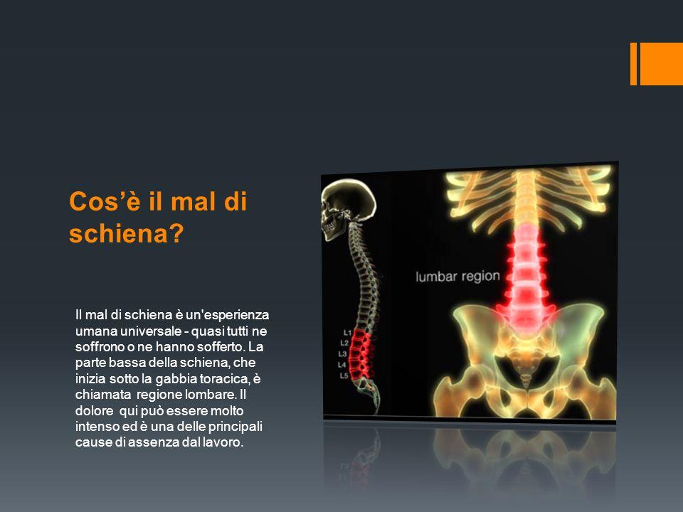 Cos'è il mal di schiena