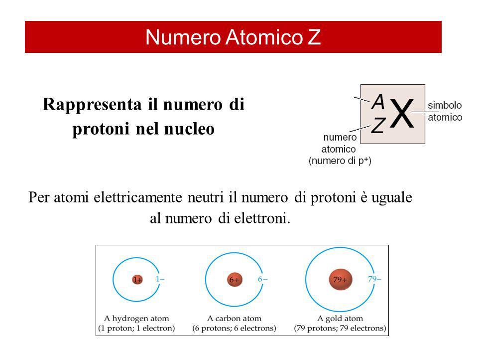 Rappresenta il numero di protoni nel nucleo