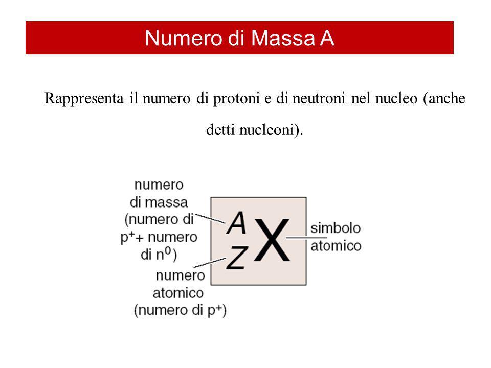 Numero di Massa A Rappresenta il numero di protoni e di neutroni nel nucleo (anche detti nucleoni).