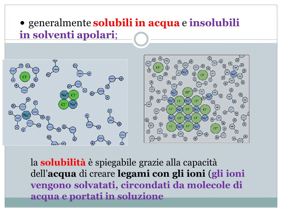 generalmente solubili in acqua e insolubili in solventi apolari;