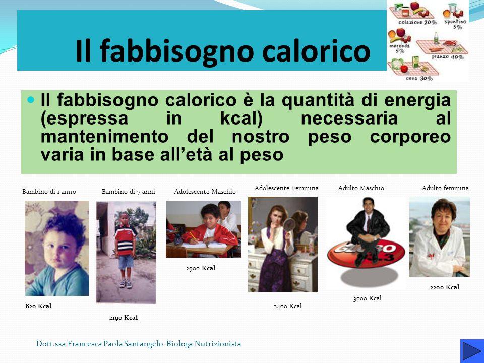Il fabbisogno calorico