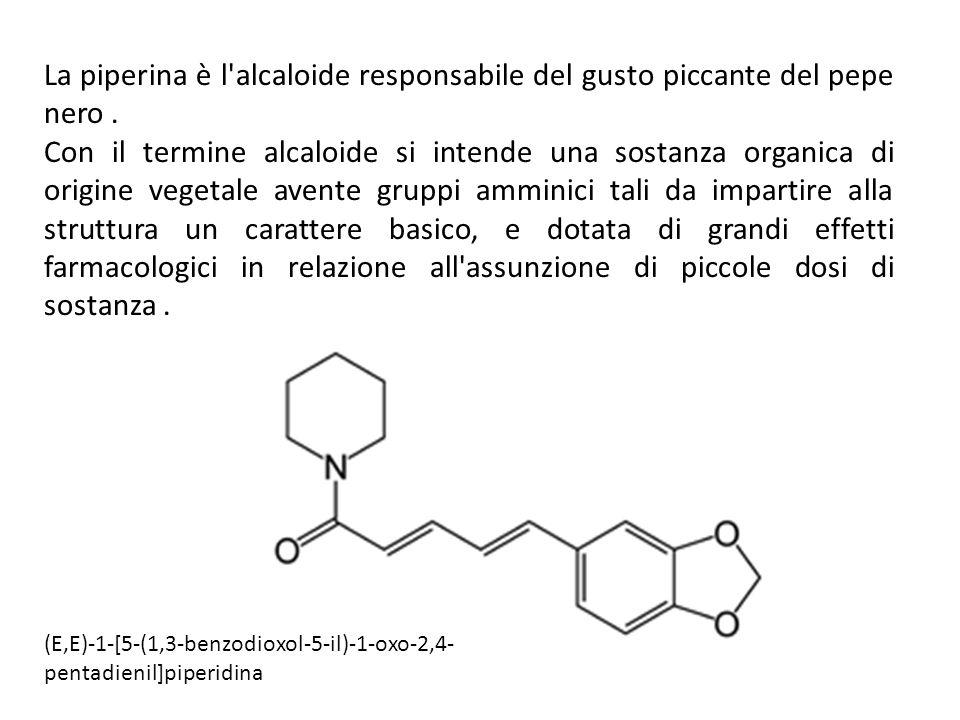 La piperina è l alcaloide responsabile del gusto piccante del pepe nero .