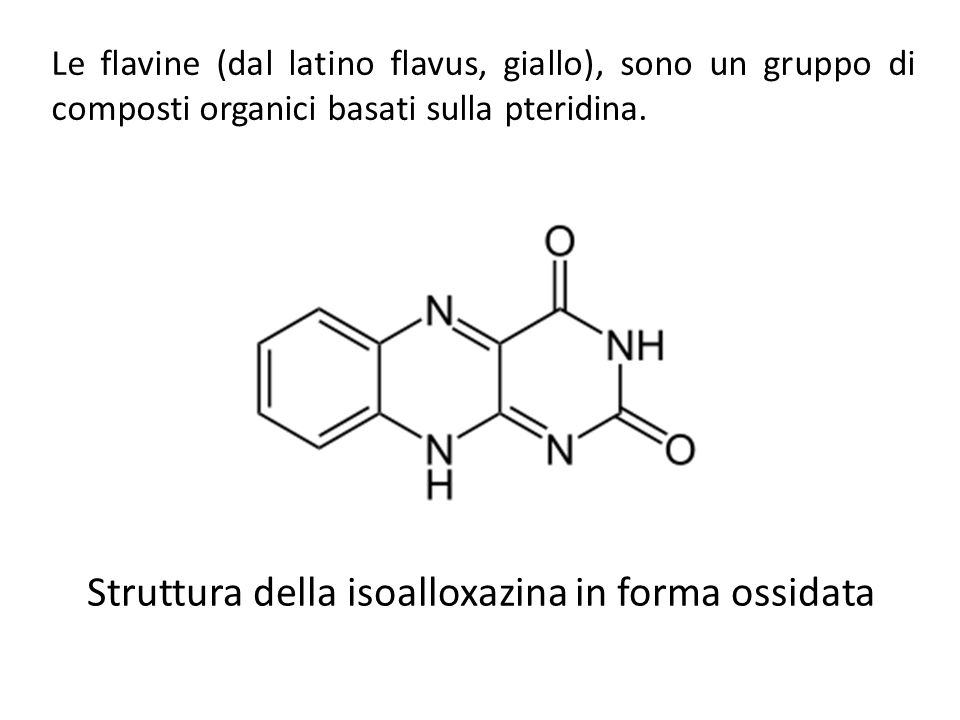 Struttura della isoalloxazina in forma ossidata