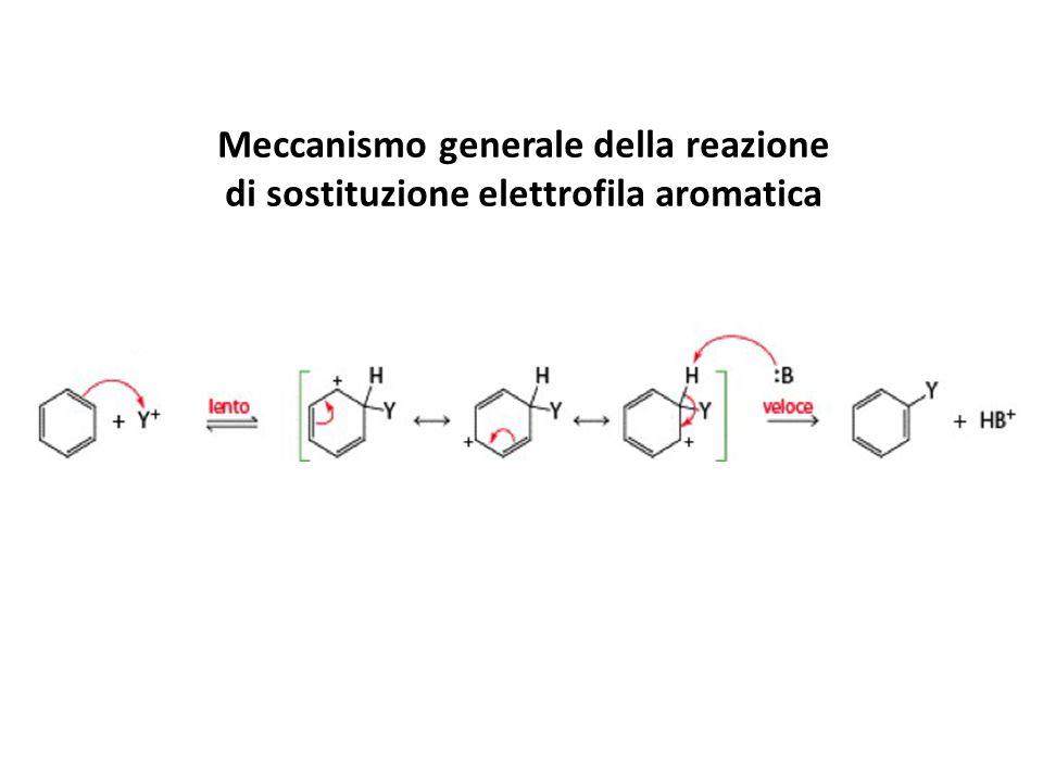 Meccanismo generale della reazione