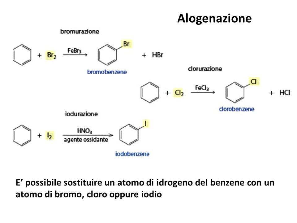 Alogenazione E' possibile sostituire un atomo di idrogeno del benzene con un atomo di bromo, cloro oppure iodio.